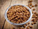 Как определить, качественный ли корм у вашей кошки?